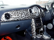 Car interieur animal hydrographics dipping