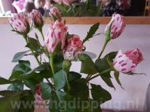 HG Dipping bloemen dip
